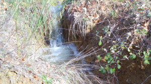 l'acqua si fa strada naturalmente