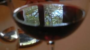 Il vino racconta